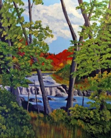 La rivière à Simon à Morin-Heights