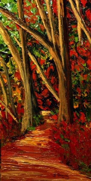 Forêt centenaire